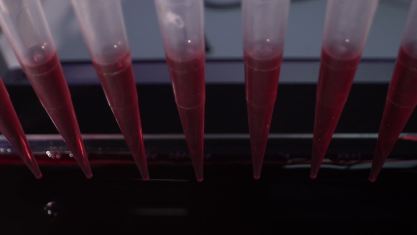pcr machine for polymerase chain reaction (PCR) technique is ubiquitous in laboratories Royalty-Free Stock Footage #1056189077