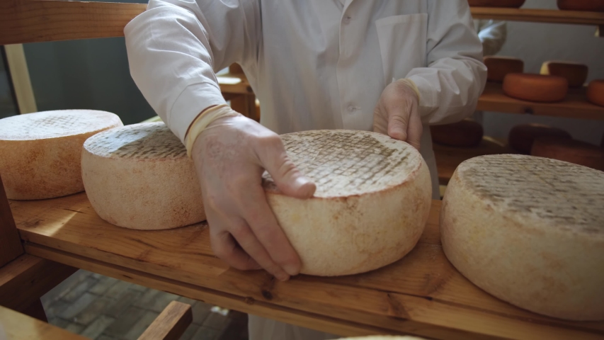 Cheese head (round) in man's hands closeup. Dairy production farm interior. Hard goat cheeses, bri, suluguni. Delicious food. Milky store business. Healthy nutrition concept. Working male farmer. Royalty-Free Stock Footage #1056193529