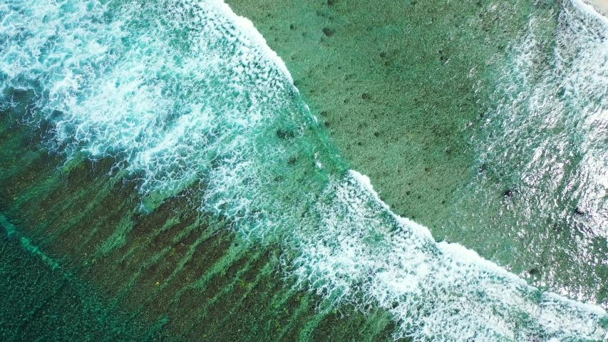 Tropical sea water ocean texture, Jamaica coral reef system - Caribbean Sea   Shutterstock HD Video #1056201086