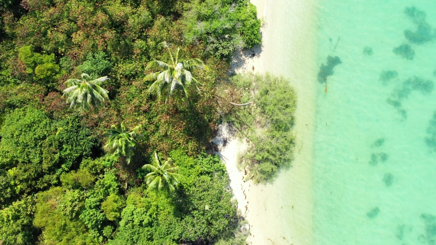 Tropical beach background. Beautiful white sandy beach with palms and turquoise seawater. aerial high angle | Shutterstock HD Video #1056210653