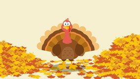 Thanksgiving Turkey Bird Cartoon Character With Autumn Leaves Background. 4K Animation Video Motion Graphics With Background