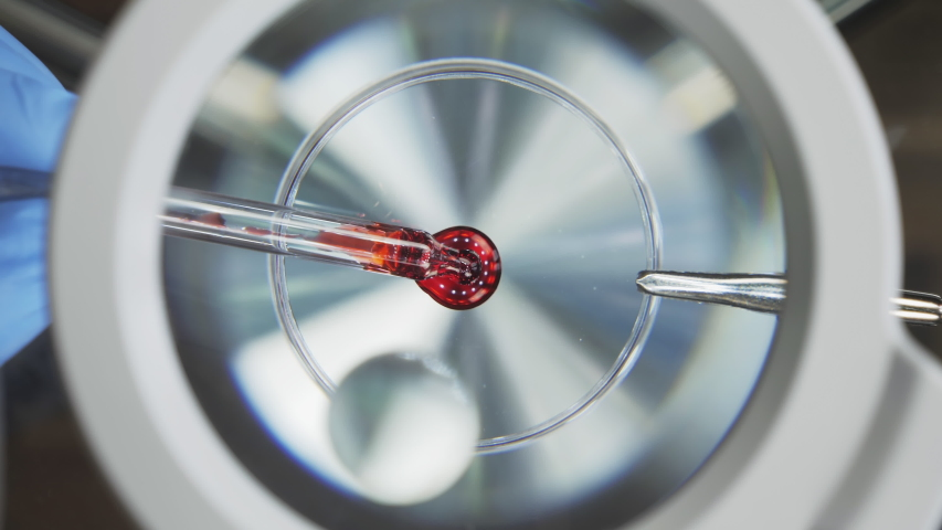 Drop of blood under the microscope, vaccine research. A scientist conducts a blood test for a virus. Close-up view from above | Shutterstock HD Video #1056273899