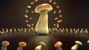 This motion graphics video showing 3d animating Mushroom and many small Mushroom around it make it good fit to your project