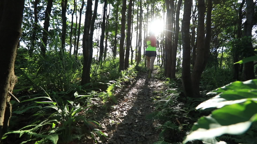 Young woman trail runner running in sunrise tropical forest