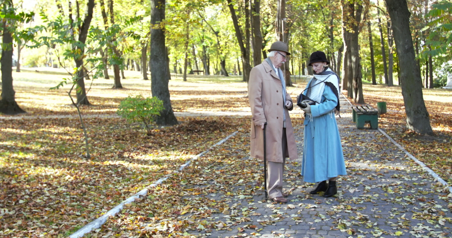 Elegant, elderly married couple talking during a walk in sunny, covered with leaves, autumn park. Slowly in 4K | Shutterstock HD Video #1056408017