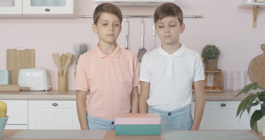 Cute Caucasian twin brothers opening glowing gift box and showing hush gesture at camera. Portrait of surprised excited boys getting miracle present. Childhood mystery. | Shutterstock HD Video #1056440453