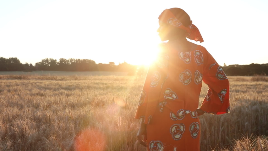 HD Video clip of African woman farmer in traditional clothes standing in a field of crops, wheat or barley, in Africa at sunset or sunrise Royalty-Free Stock Footage #1056475832