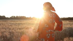 HD Video clip of African woman farmer in traditional clothes standing in a field of crops, wheat or barley, in Africa at sunset or sunrise