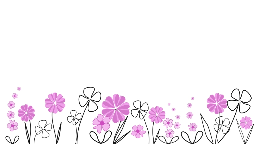 Floral border from white paper, hand drawn flowers, seamless pattern for postcard with blank background,black outline and pink flowers, | Shutterstock HD Video #1056534551
