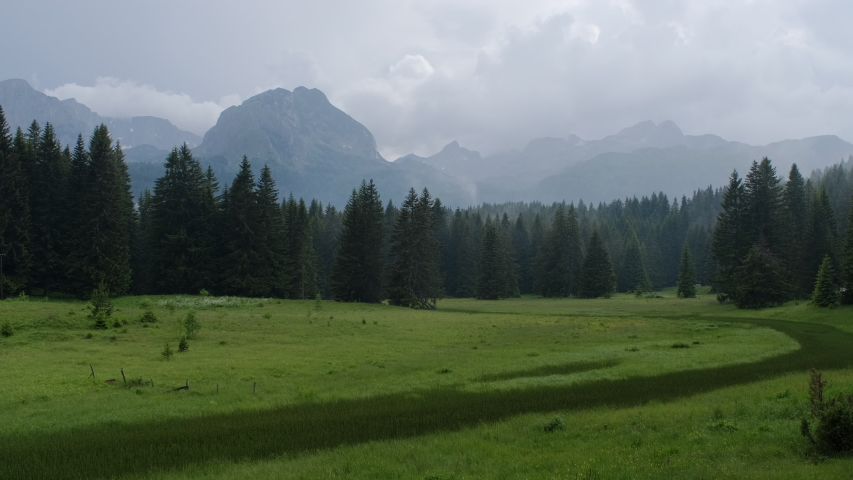 Beautiful view of the forest and mountain landscape in the north of Montenegro after the rain