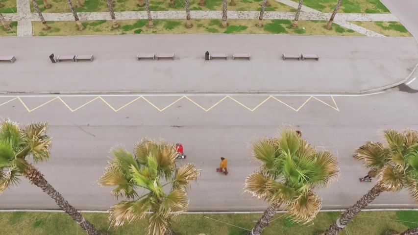 Aerial footage of skaters riding between palms | Shutterstock HD Video #1056554108