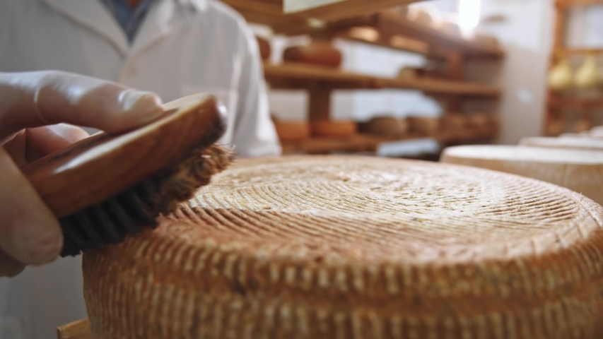 Macro view of male farmer hand scrubbing big cheese crust with brush close-up. Dairy manufacturing process. Milky products store delivery. High quality of traditional cheeses making. Healthy nutrition | Shutterstock HD Video #1056559160
