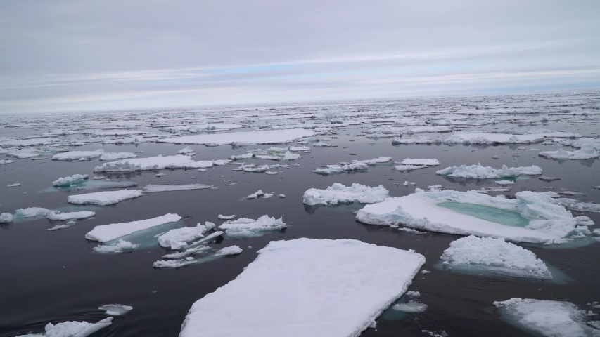 Arctic sailing among glaciers and floating ice blocks, in frozen sea and breathtaking landscape   Shutterstock HD Video #1056580811
