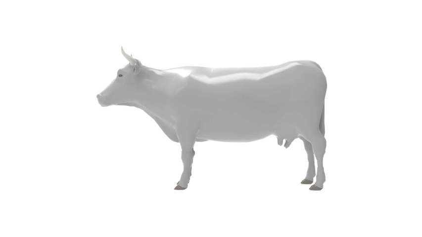 3D rendering animation clip of a cow turning in a circle round isolated