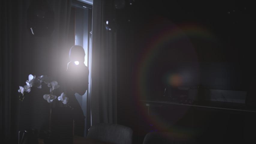 Slomo: Intrusion Of A Burglar Holding A Flashlight In An Apartment At Night    Shutterstock HD Video #1056616169