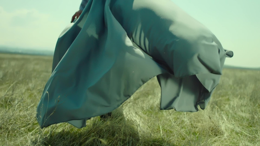 Rear view of woman walking in slow motion through a field . Young stylish lonely girl walking on meadow field . Long skirt fabric flowing by wind . Fashion style . Shot on ARRI Alexa Cinema Camera Royalty-Free Stock Footage #1056639446