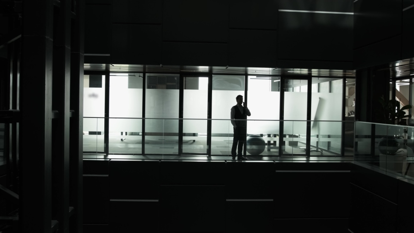 Silhouette of an young man that is talking at phone and walking inside the business building | Shutterstock HD Video #1056651773