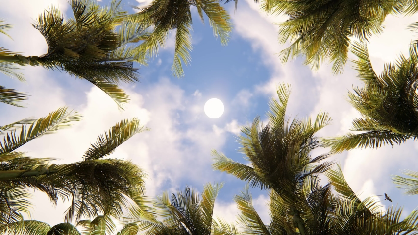 View of the Palm Trees Passing by Under Sunny Blue Skies. Wide Shot of Driving with Camera Looking up at Palm Trees in 4K format POV Tropical Vacation. 3D Rendering, 4K Rendering.    Shutterstock HD Video #1056697160