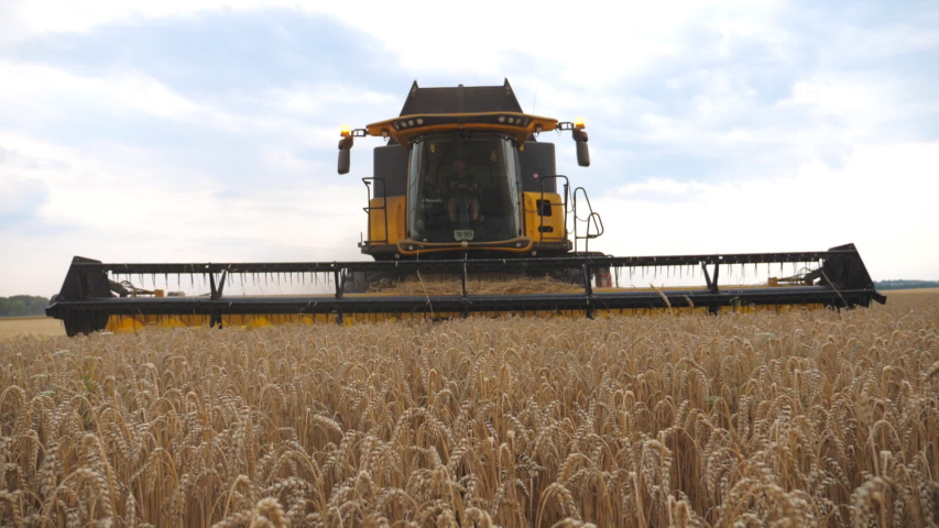 Combine slowly riding through rural cutting yellow stalks of barley. Grain harvester working in field gathering crop of wheat. Concept of agronomy or harvesting. Slow motion Close up Front view   Shutterstock HD Video #1056713726