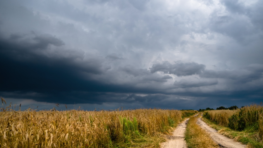 Dramatic storm clouds timelapse over rye fields. Coutry road leading to the center of the hurricane. Very windy weather. Road to the field of wheat against the background of dark sky   Shutterstock HD Video #1056860237