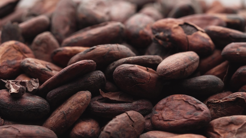 Cocoa beans. Macro, cocoa beans coming in slow motion the camera. | Shutterstock HD Video #1056863798