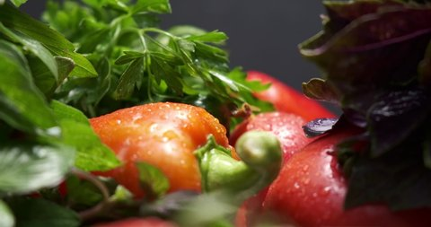 fresh farm vegetables. tomatoes, bell peppers, cucumbers, basil green onions and parsley with dill in drops of water. studio shooting, movements filmed with a slider, macro photography.