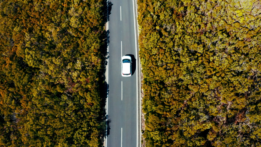 4K Aerial drone footage of small white family hatchback moving through picturesque landscape. Succulent green and yellow forests on both sides of road. Travelling, car rental, insurance concept. | Shutterstock HD Video #1056965891