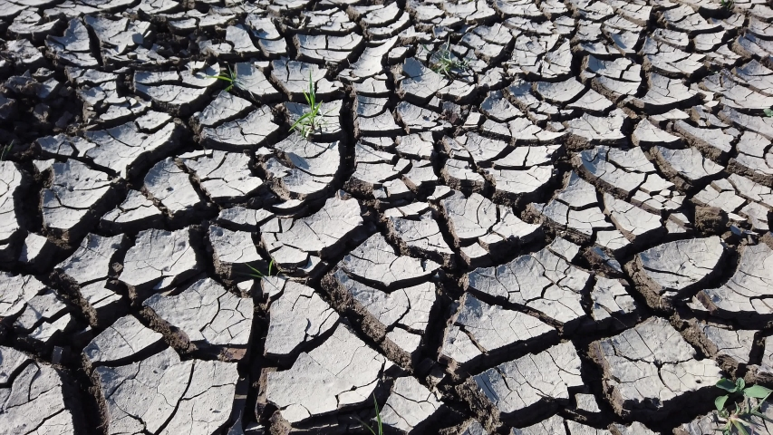 Deep large cracks on dehydrated soil surface. Slow motion. Gray dry cracked earth. Desert. Close-up. Bright direct lightning light. Global warming, environmental pollution concept.   Shutterstock HD Video #1056987485