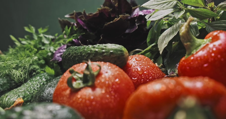 fresh farm vegetables. tomatoes, bell peppers, cucumbers, basil green onions and parsley with dill in drops of water. studio shooting, movements filmed with a slider, macro photography. Royalty-Free Stock Footage #1056987539