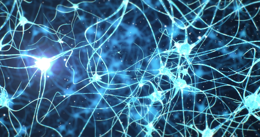 Neurons and neural connections 3D render. Neuronal activity in the brain, neurogenesis, neurotransmitters, electricity in the brain,synapses, dendrid, neurotransmitters, myelin | Shutterstock HD Video #1057107938