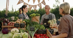 Senior woman buying groceries at local farmers market. Senior man and his daughter offering fresh fruits and vegetables right from the ranch 4k footage