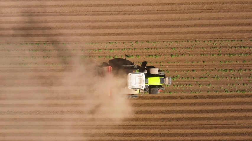 Tractor Hilling Potatoes with disc hiller in a potato field from above. Agricultural work in processing, cultivation of land | Shutterstock HD Video #1057165132
