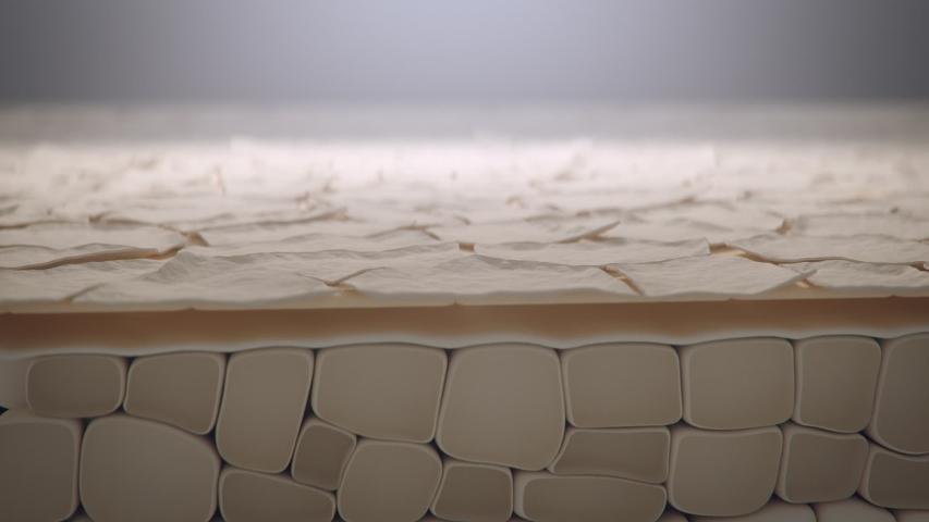 Dead skin cells peeling away from body, macro cross-section animation | Shutterstock HD Video #1057207354