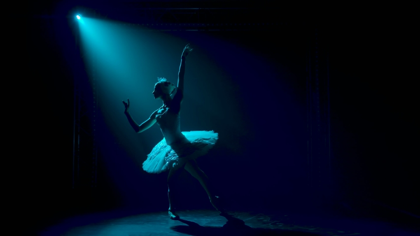 Silhouette of a graceful ballerina in a chic image of a white swan. Classical ballet choreography. Shot in a dark studio with smoke and neon lighting. Slow motion.