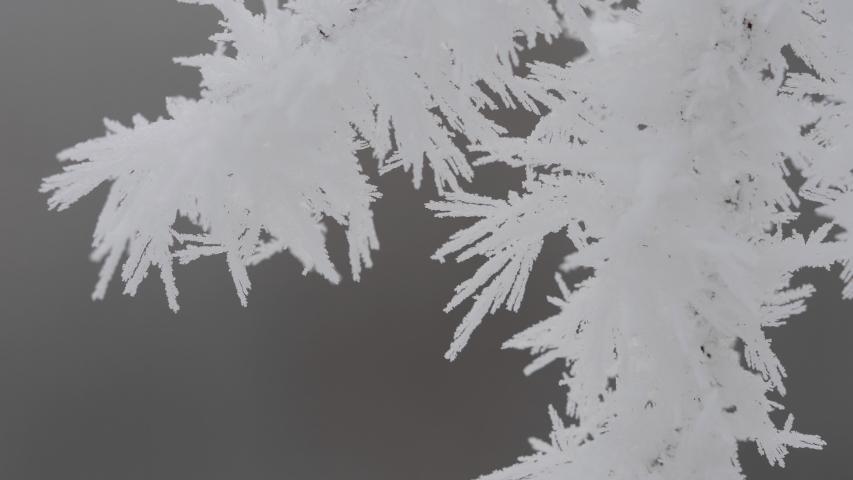 Macro detail of ice rime hoarfrost on plant branch | Shutterstock HD Video #1057230265