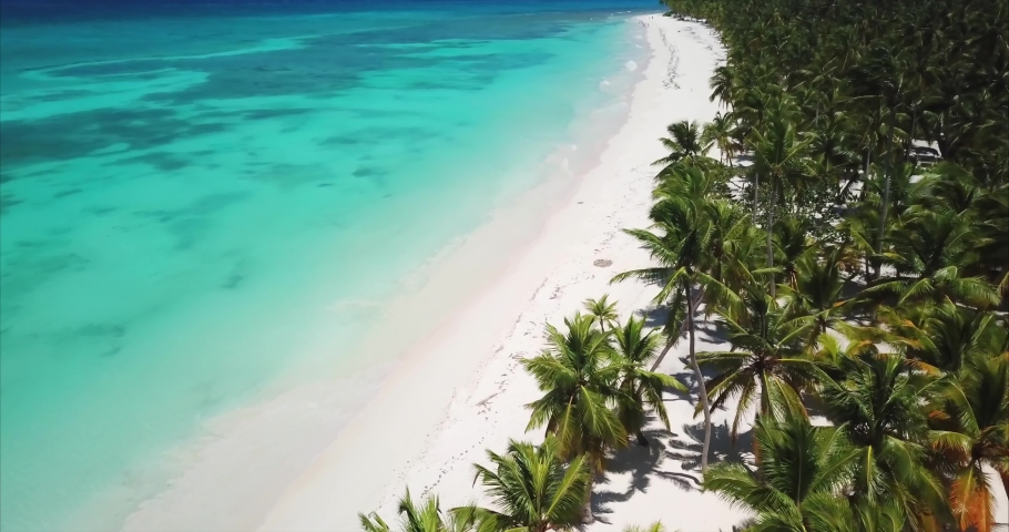 Aerial view of motion along tropical wild beach with palm tops, white sand and turquoise color water. Waves rolling onto the shore. Amazing paradise Saona island vacations | Shutterstock HD Video #1057242880