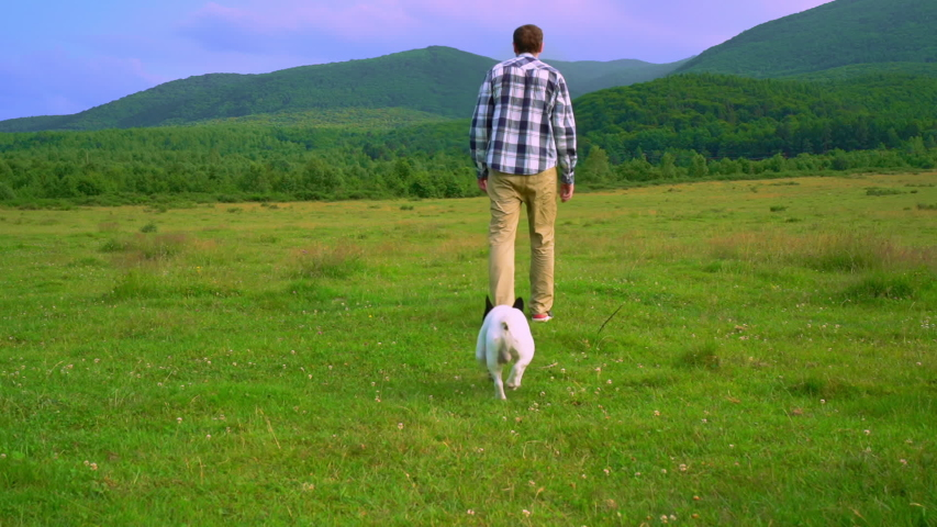 Back view man in casual clothes walking with french bulldog on the grassland mountain landscape in summer season slow motion | Shutterstock HD Video #1057257982