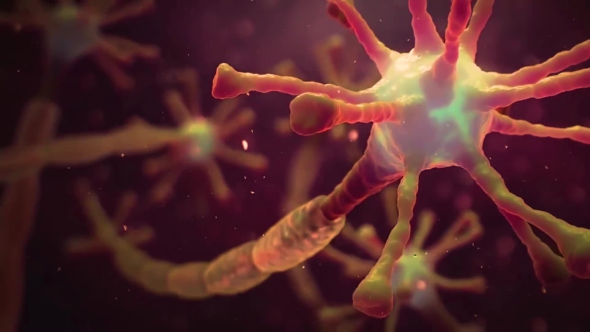 Neuronal and Synapse Activity animation. Neurons in the head, neuroactivity, synapses, neurotransmitters, brain, axons. Electrical impulses inside the human brain. Royalty-Free Stock Footage #1057327750
