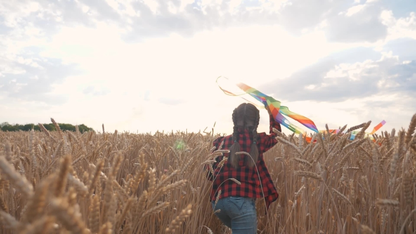A happy girl runs with a kite in her hands through a wheat field. The child dreams of freedom, flight and a happy family. The kid is playing in the fresh air in the Park. | Shutterstock HD Video #1057408102