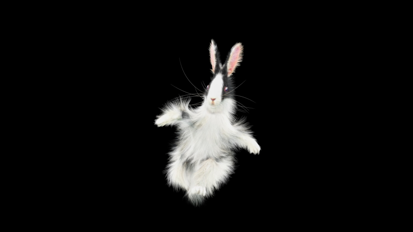 Rabbit Dancing CG fur, 3d rendering, animal realistic CGI VFX, composition 3d mapping, cartoon, Included in the end of the clip with Luma matte. | Shutterstock HD Video #1057422250