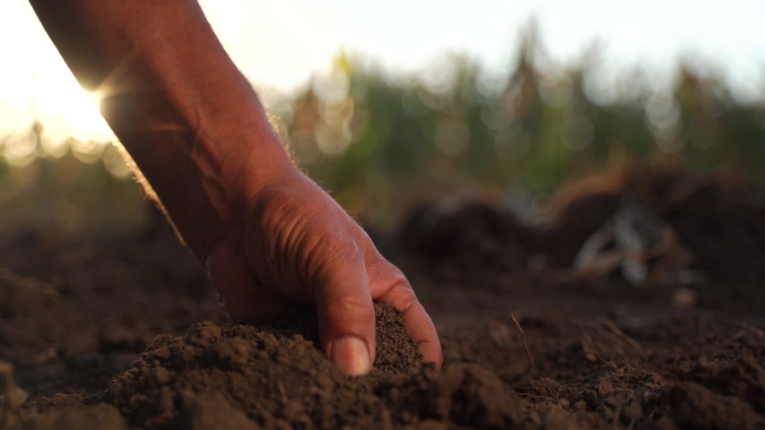 Close up of male hands touching dry ground in an agricultural field, Soil, cultivated dirt, earth, ground, Organic gardening, agriculture. Nature close up. Environmental texture, pattern. Mud on field Royalty-Free Stock Footage #1057586554