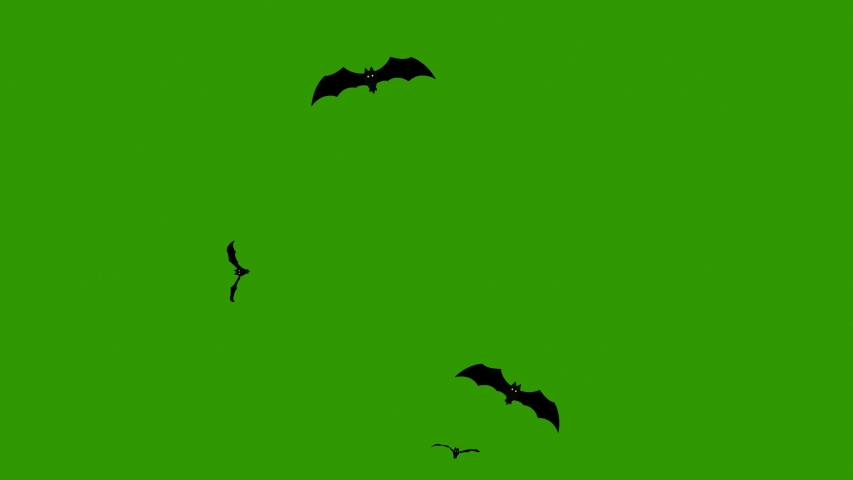 Bats animation on green screen. Animated flying bats | Shutterstock HD Video #1057604293