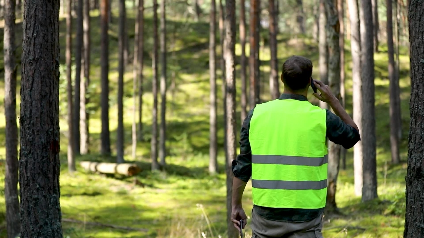 forester is watching the development of the forest. forestry and afforestation Royalty-Free Stock Footage #1057666945