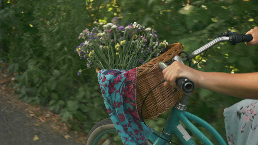 Female hands hold handlebar of vintage old bike with basket of flowers, close up. Woman cyclist is cycling on retro bike in park. Girl rides retro bicycle on summer sunny day. Stylish female on bike