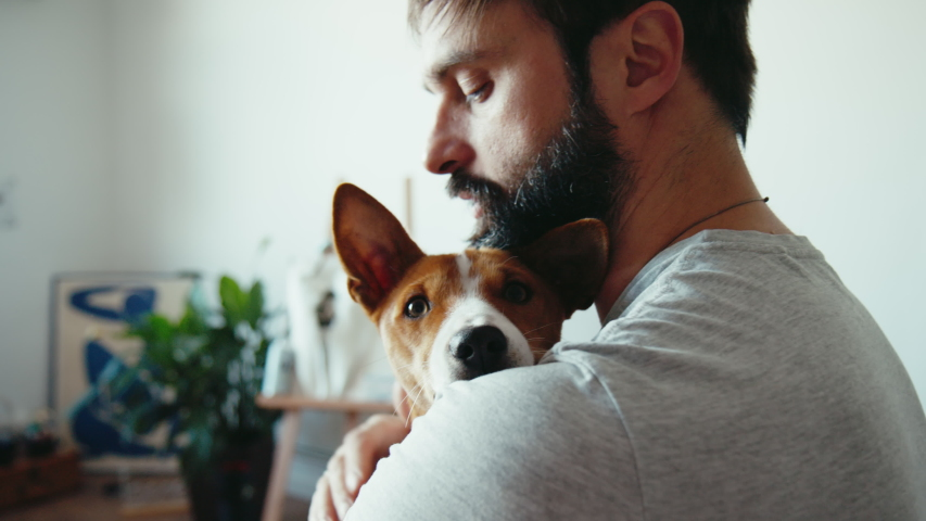 Close up shot of young bearded man hugging and gently strokes his cute friend brown basenji pure breed dog. Animals pets and human friendship | Shutterstock HD Video #1057757191