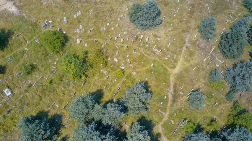 Aerial, drone view abandoned jewish cemetery in the middle of forest in Zarki, Poland. 18th century graveyard hidden in the woods. Forgotten tombstones and matzevot of dead jews are deteriorating.    Shutterstock HD Video #1057758871