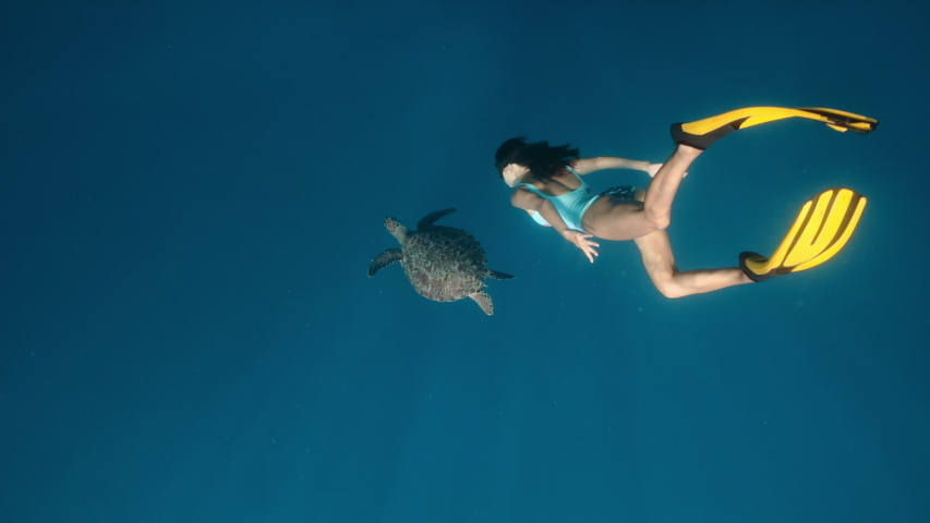 Freediver and turtle in natural habitat. Slow motion underwater contact of Beautiful girl swim next to wild underwater animals on surface of clear blue sea or ocean. Unique sea voyage, trip, travel.