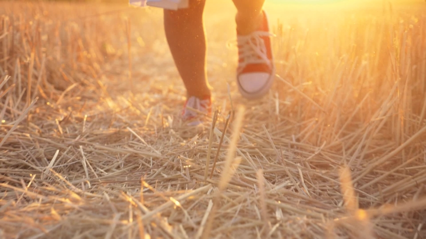 Happy girl kid in sneakers run on wheat field. Child at sunset in park. Legs of runs kid in sneakers at sunset. Happy girl run dream. Dream and happy concept. Kid legs in wheat field. Girl run in park Royalty-Free Stock Footage #1057788523