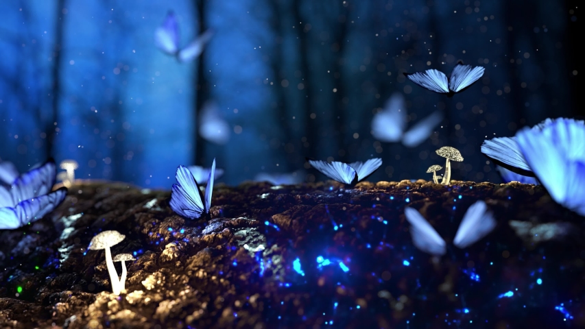 Butterfly Swarm - Blue Adonis - Transparent Transition - Full HD realistic 3D animation,Butterfly Particles Animation Butterfly Animation Colorful Butterfly