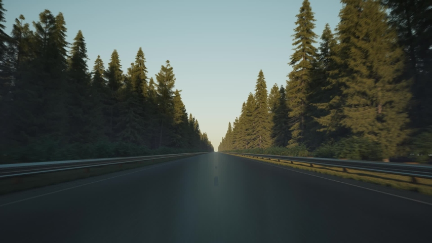Driving along the forest, timelapse. Day to night at the driving. Car driving on the road along the forest | Shutterstock HD Video #1057903885